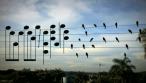 Όταν η φύση και η μουσική εναρμονίζονται απόλυτα με την αισθητική…